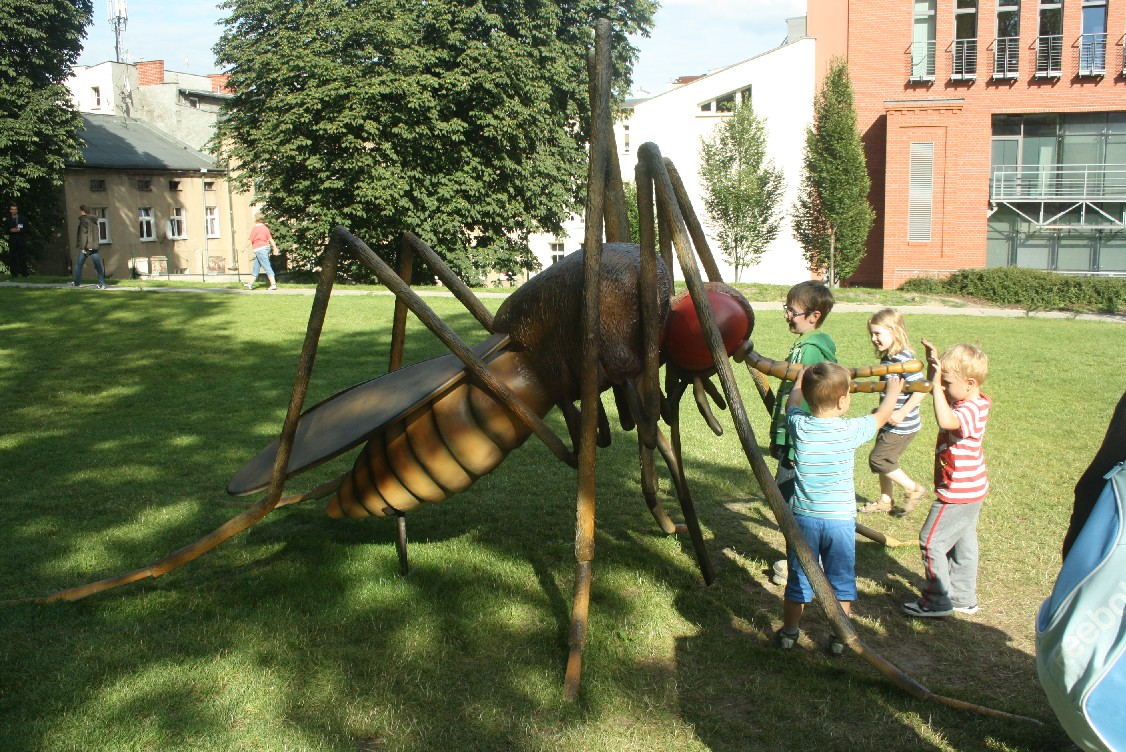Giant insects in a park in Poznan.
