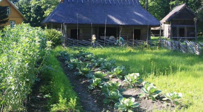 Freilichtmuseum Tallinn: Ofen ohne Schornstein, aber kein Essen ohne Fleisch