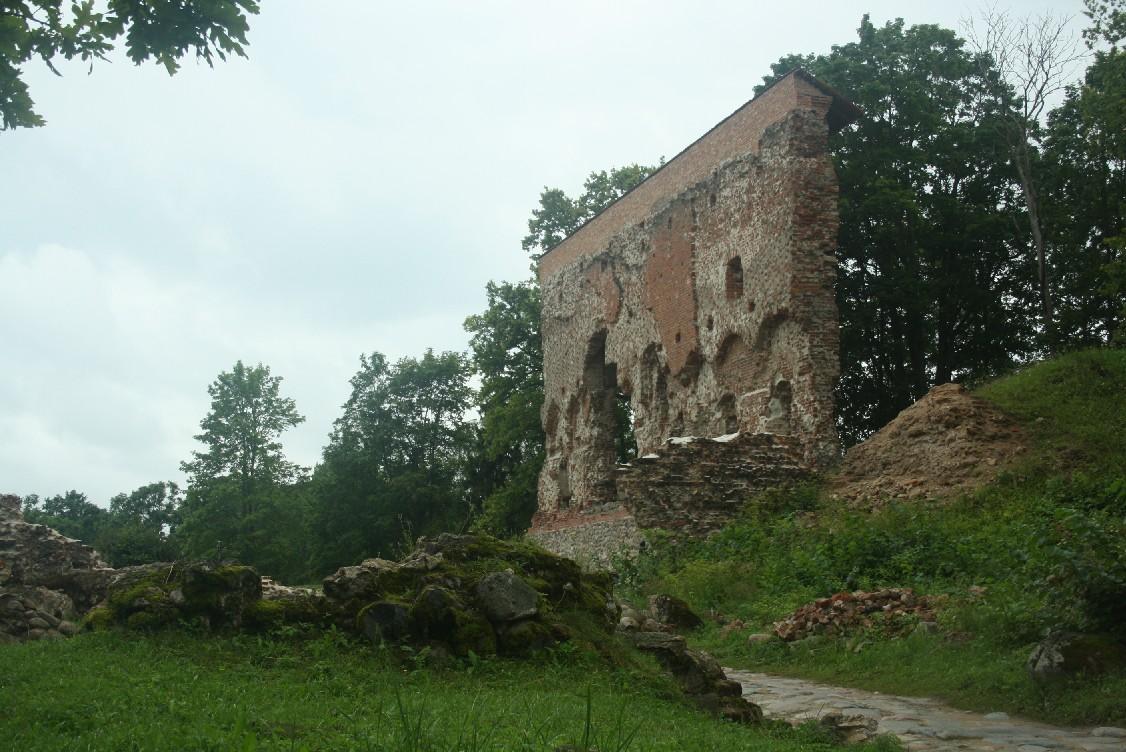 Die Ruinen der Burg Fellin in Viljandi.