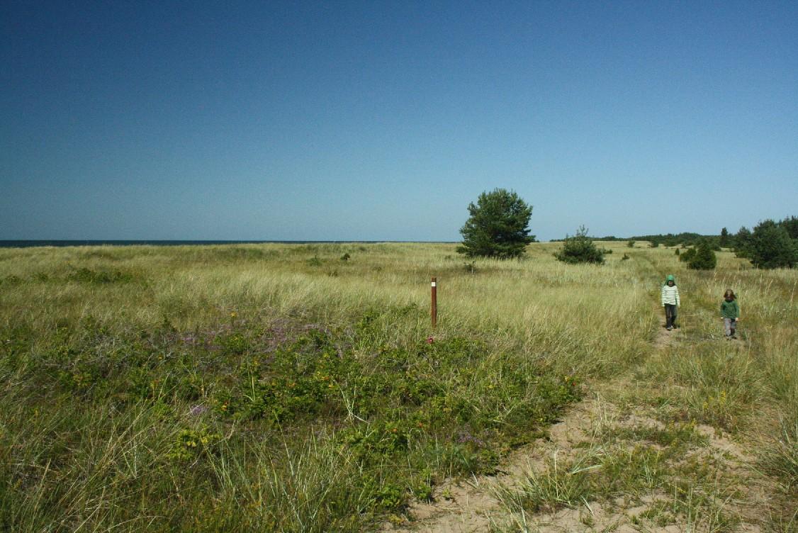 Estland-Saaremaa-Harilaid-Wandern