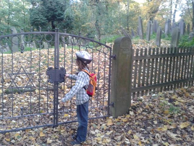 Der jüdische Friedhof am Harrl, Bückeburg.