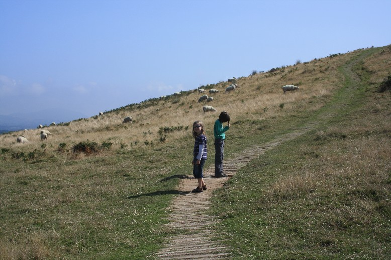 Climbing up to Lleu Llaw Gyffes' ancient hillfort is a nice family walk.