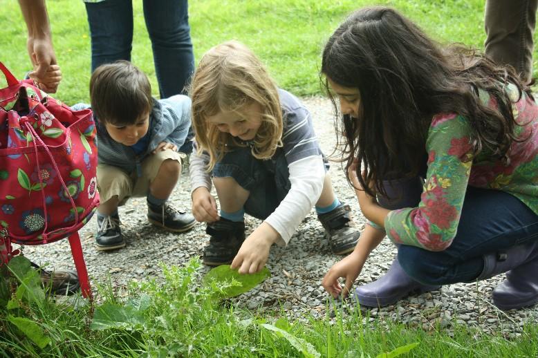 Wer mit Kindern Wandern geht, betreibt auf jeden Fall Slow Travel im engeren Sinne, ob er will oder nicht. Raupenfund an den Aber Falls in Wales.