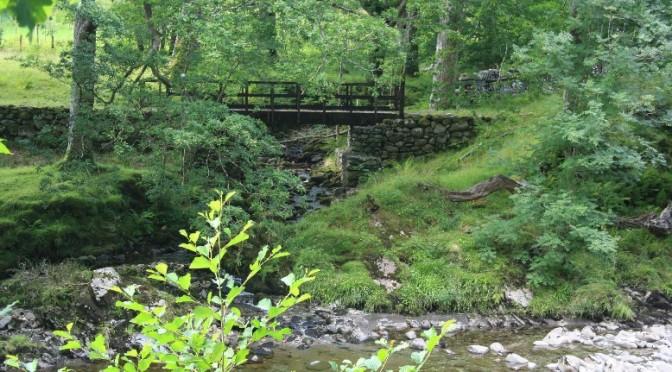 Llanfihangel-an-arth: Couchsurfer-Safari im wilden Wales
