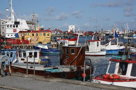 Der Fischerhafen von Hirtshals mit den vielen bunten Booten ist nicht weit vom Fährhafen entfernt. (The fishing harbour is not far from the ferry terminal.)