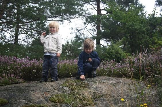 Norwegen mit (kleinen) Kindern: Unsere Erfahrungsberichte auf family4travel