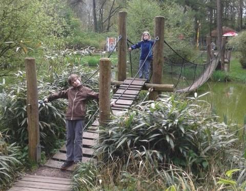 Eisbären, Gorillas und Mammuts: Der Rostocker Zoo mit Darwineum
