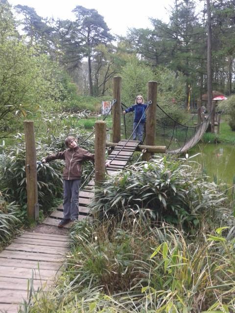 Der Rostocker Zoo ist nicht nur ein Tierpark, sondern auch ein wunderschöner Naturraum mit viel Grün und viel Abenteuer.