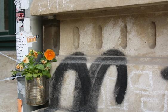Typisch Dresdner Neustadt.