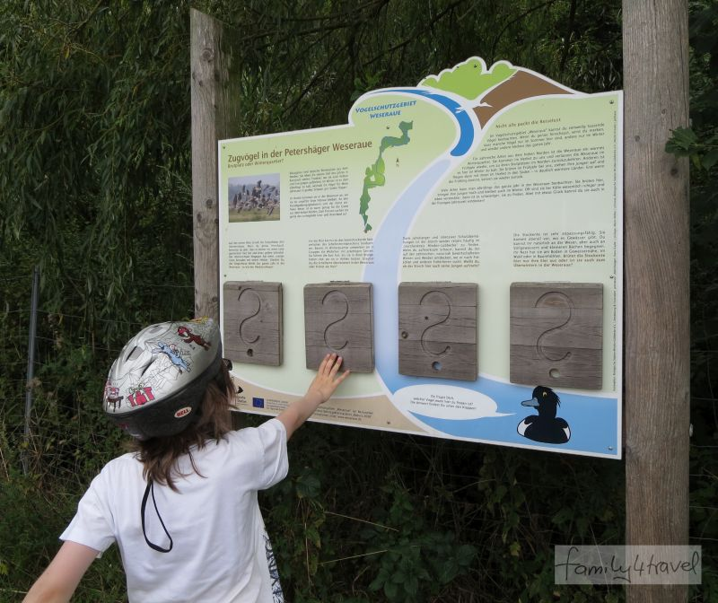 Die Infotafeln tarnen sich als willkommene Gelegenheit zur Pause und jubeln den Jungs auf spielerische Weise Wissen über die heimische Tier- und Pflanzenwelt unter.