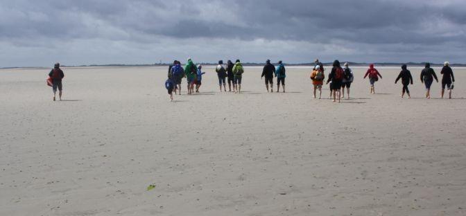 Wattwanderung Föhr: Als wir über den Meeresboden spazierten