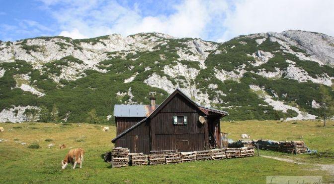 Kann man idyllischer wohnen? Auf der Tauplitzalm stehen sommers wie winters etliche Häuschen zur Vermietung.