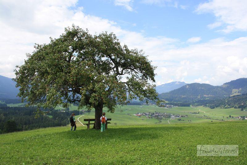 Gipfelblick für Anfänger: Auf der Kuppe des Kulmbergs gibt's immerhin frische Äpfel zum Weitblick gratis dazu.
