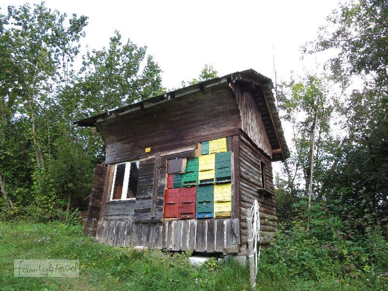 Auch um Radovljica herum (und überall sonst in Slowenien) sind überall bunte Bienenstöcke zu sehen.