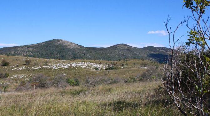 Istrien-Urlaub: Menschenleeres Grenzland im Norden