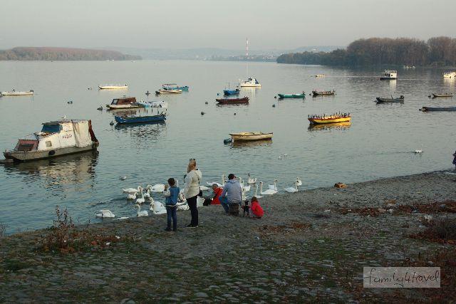 An der Donau im ruhigen Stadtteil Zemun ist Belgrad idyllisch.