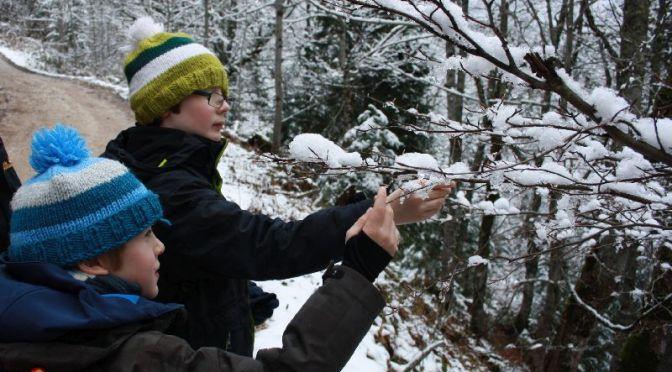 Janis erzählt euch was: Der erste Schnee auf unserer Reise