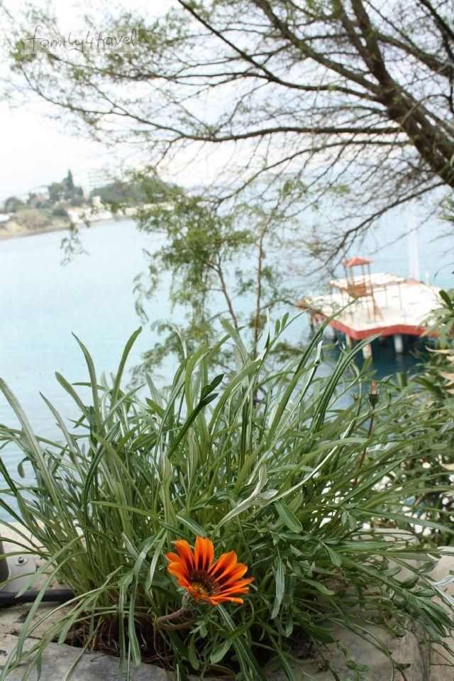 Ein 10-minütiger Spaziergang durch den Hotelpark am Meer passt gerade so zwischen Mittagessen, Verdauungsschläfchen und Abendbüffet.