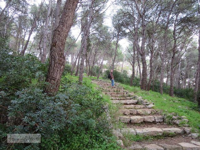 Der Weg durch das Naturschutzgebiet Porto Salveggio ist wildromantisch, und hier ein bisschen steil. Zum Glück gibt's die Treppe.