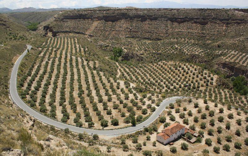 Gorafe, Andalusien, Spanien