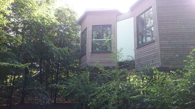 Stylish und auch nach Janis' Geschmack: die Baumhäuser im Center Parcs.