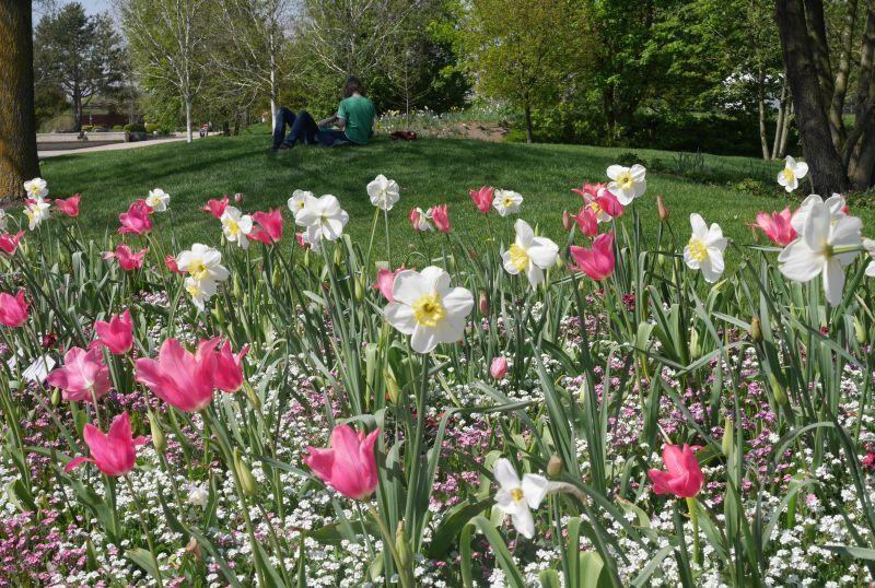 Park der Gärten, Bad Zwischenahn