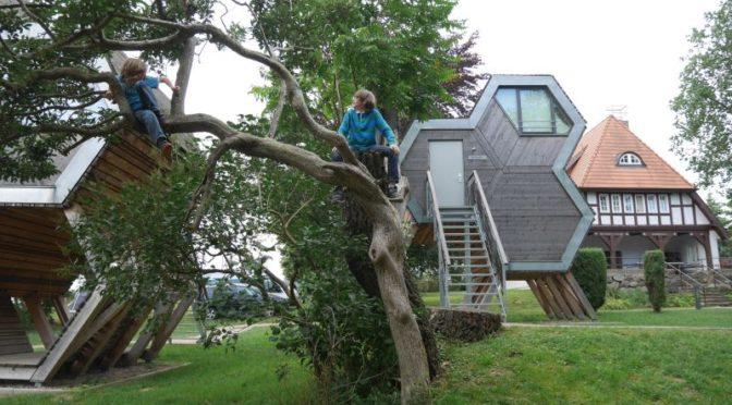 Jugendherberge Beckerwitz, Schlafen im Baumhaus