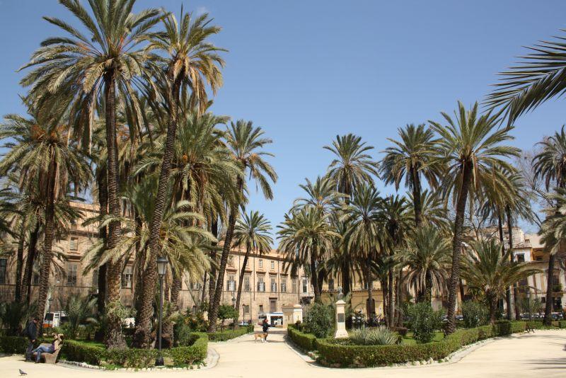Palermo, Sizilien, Palmen
