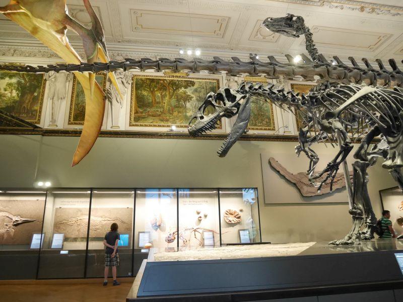 wien-naturhistorisches-museum-dinos-janis