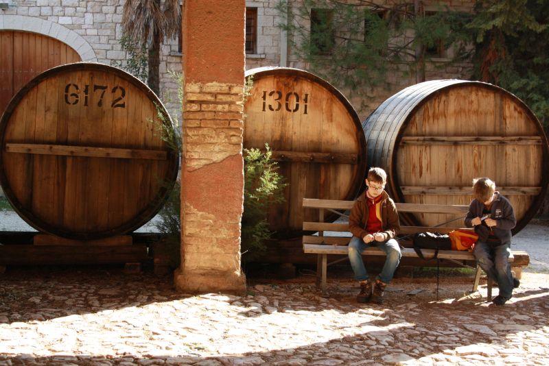 Weingut Achaia Clauss, Patras mit Kindern, Griechenland, Mavrodaphne