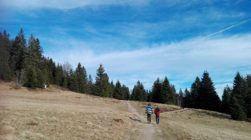Familienurlaub im Schwarzwald, Feldberger Hof, Wandern mit Kindern