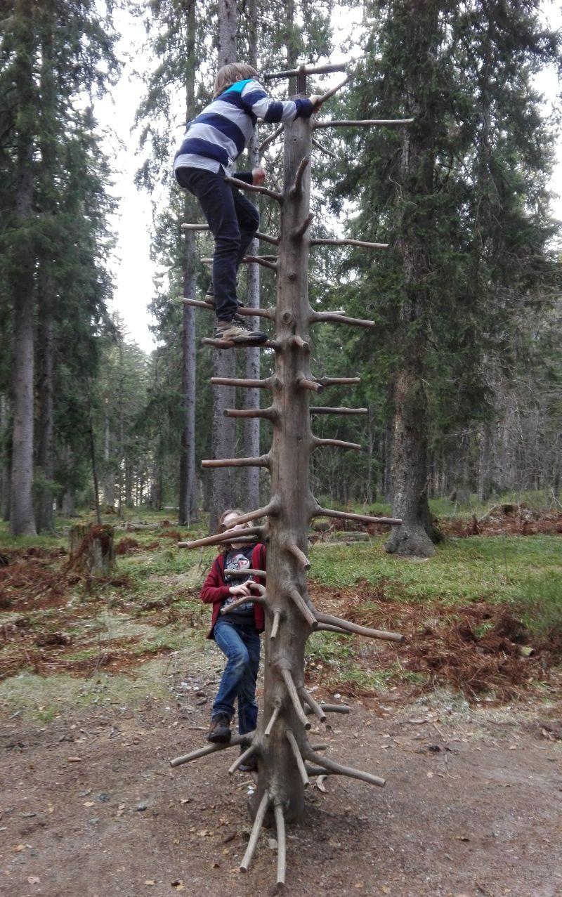 Familienurlaub im Schwarzwald, Feldberger Hof, Wandern mit Kindern, Wichtelpfad Klettern