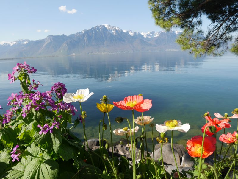 Backpacking mit Kind in der Schweiz, Montreux