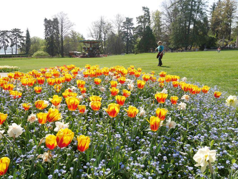 Genf mit Kind, Botanischer Garten, Kaurssell
