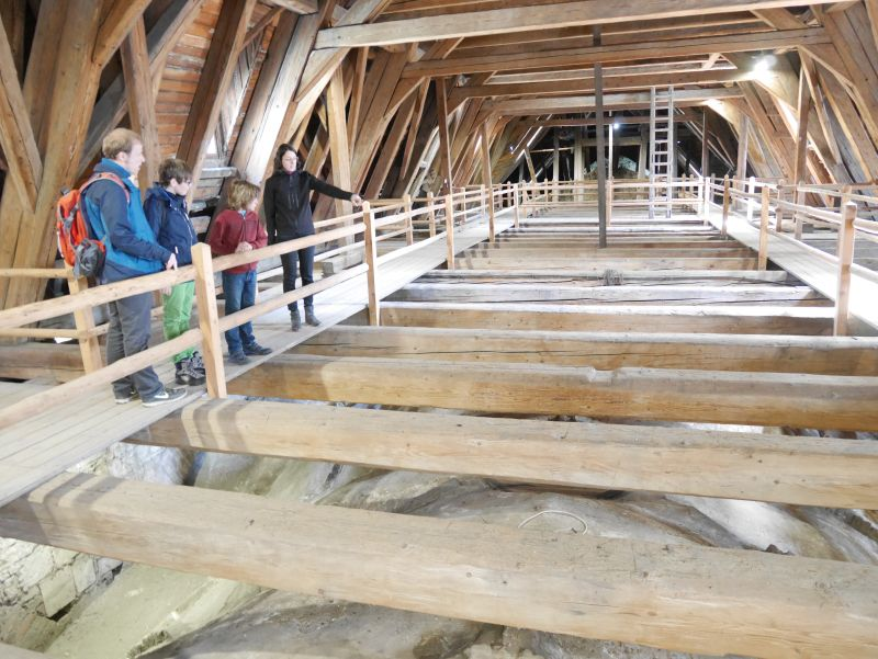 Kirchturmführung Merseburger Dom mit Kindern, Deckengewölbe von oben
