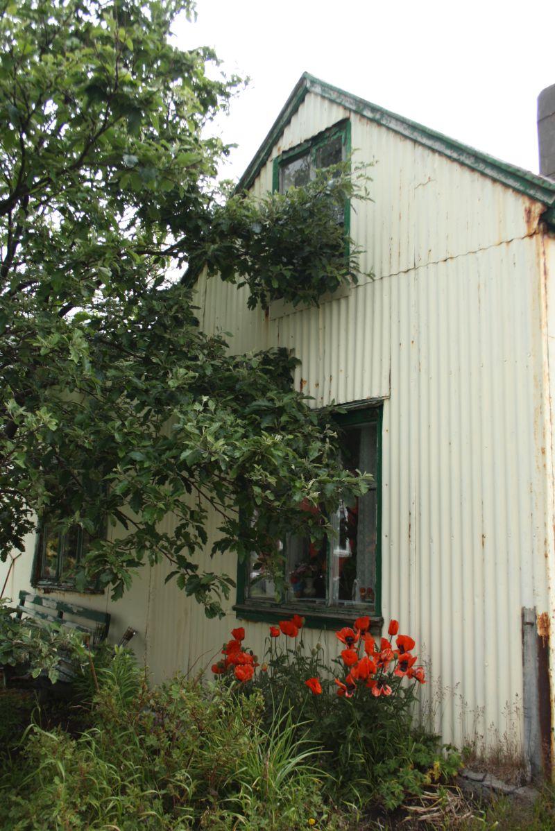 Isafj rdur island kreuzfahrt mohnblumen haus for Haus island