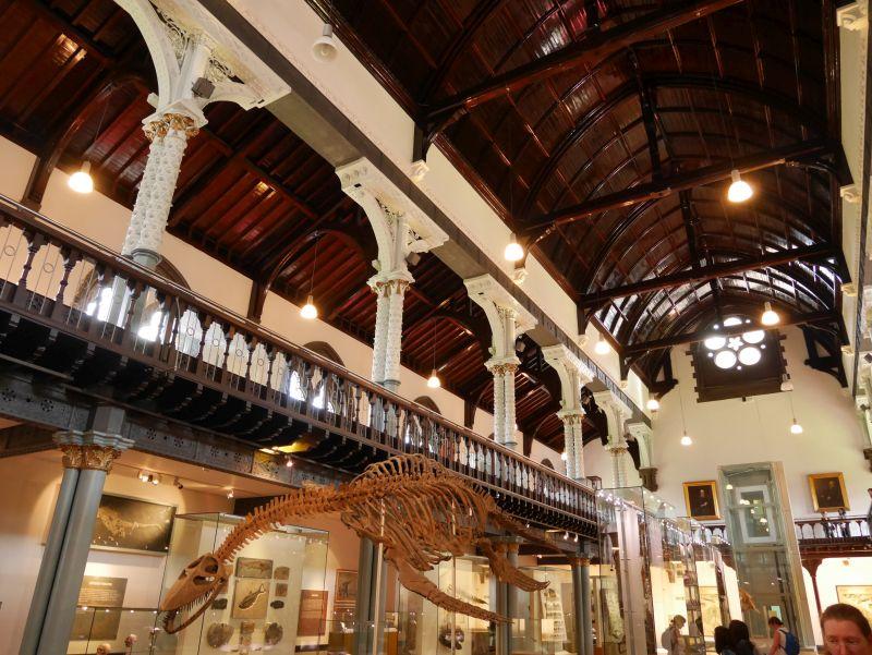 Tagesausflug nach Glasgow mit Kindern, Hunterian Museum