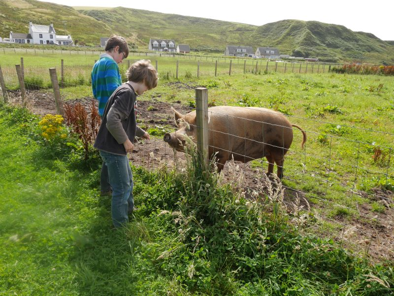 schottland-mit-kindern-kintyre-bellochantuy-strand farm walk
