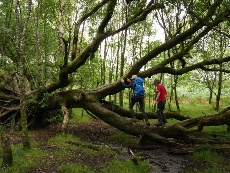 Wandern mit Kindern in Schottland