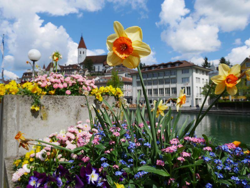 Tagesausflug nach Thun mit Kind im Frühling