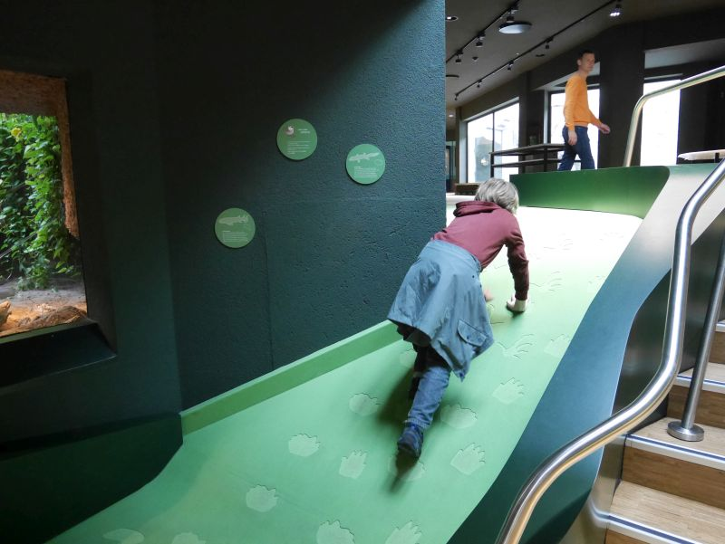 Landgang, Ausstellung, Aquazoo Löbbecke Museum Düsseldorf mit Kindern
