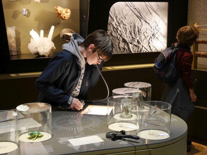 Ausstellung, Aquazoo Löbbecke Museum Düsseldorf mit Kindern