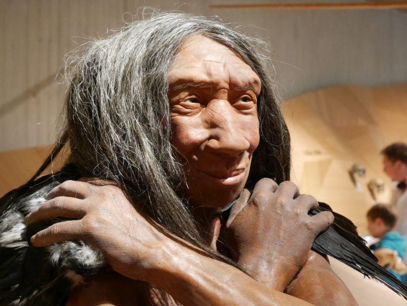 Neanderthal Museum Wachsfigur