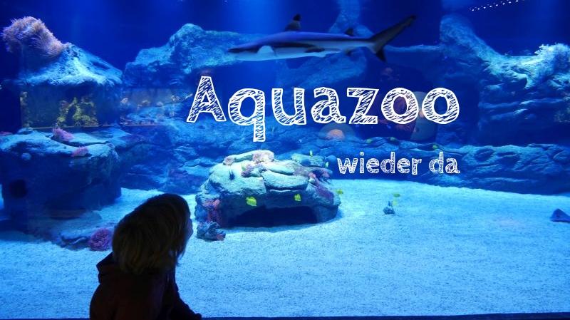Aquazoo Löbbecke Museum Düsseldorf mit Kindern