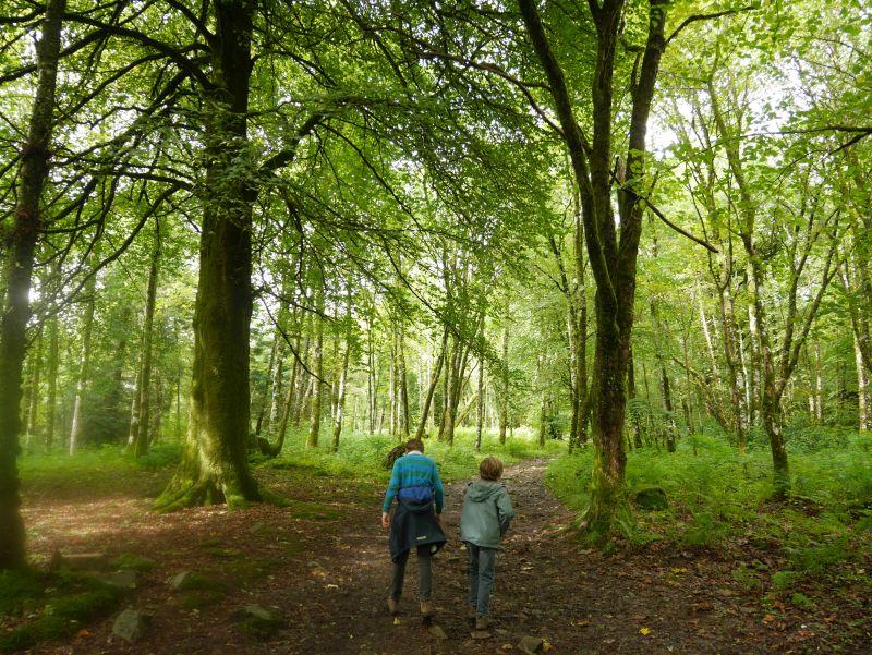Inveraray mit Kindern, Wandern, Wald, Schottland