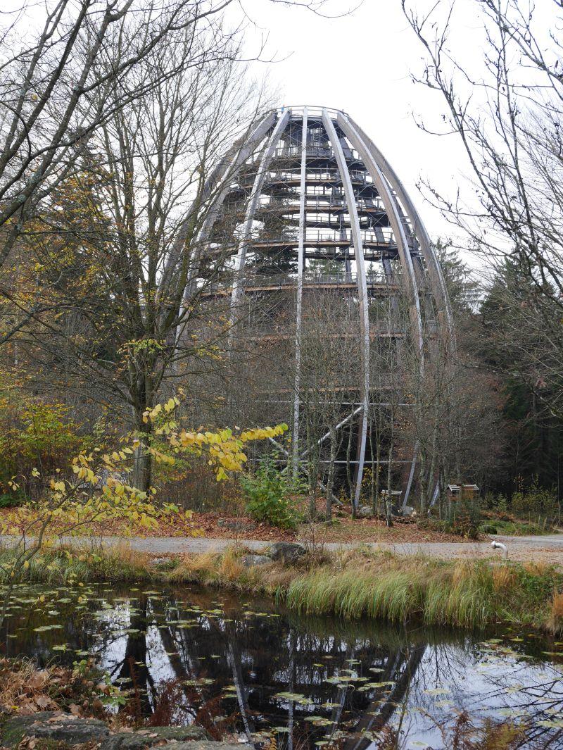 Familienurlaub im Bayerischen Wald, Baumwipfelpfad