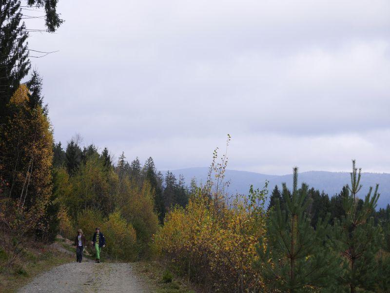 Familienurlaub im Bayerischen Wald, Wandern