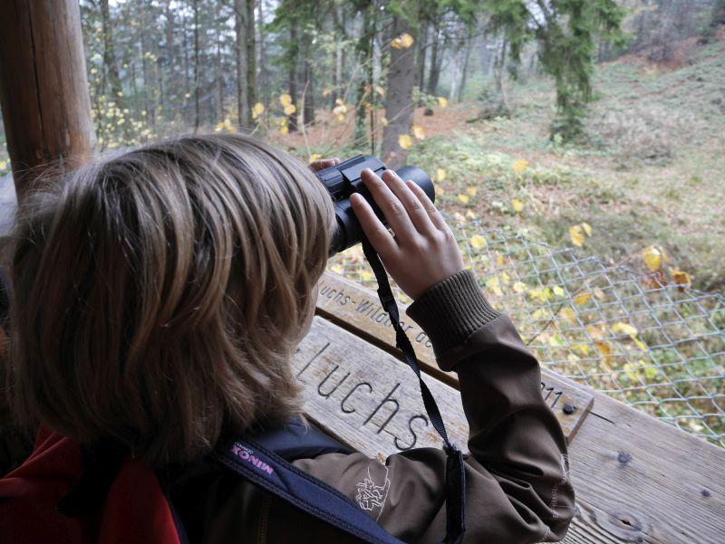 Familienurlaub im Bayerischen Wald, Tierfreigelände am Lusen