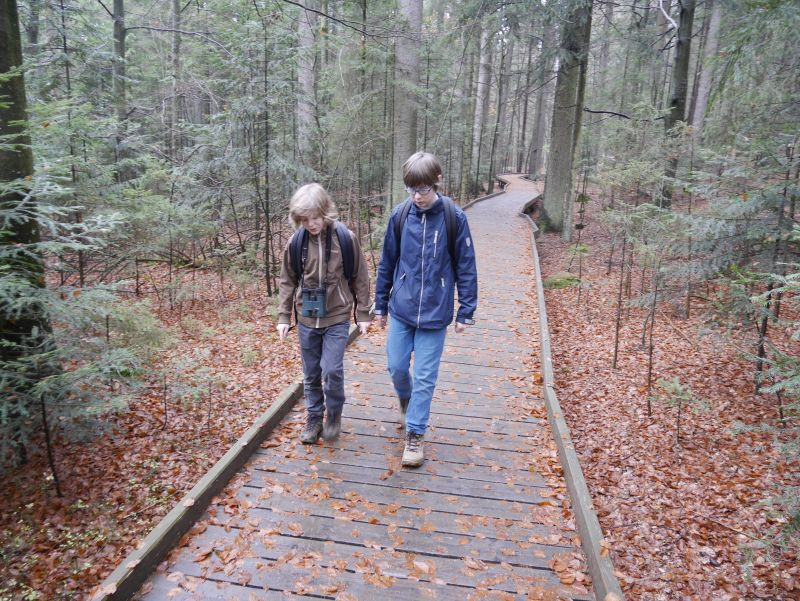 Wandern mit Kindern im Familienurlaub im Bayerischen Wald