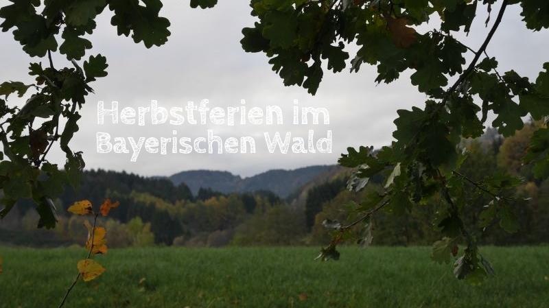 Familienurlaub im Bayerischen Wald, Herbstferien